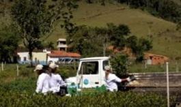 Greenway Project Brazil video thumbnail_286x170